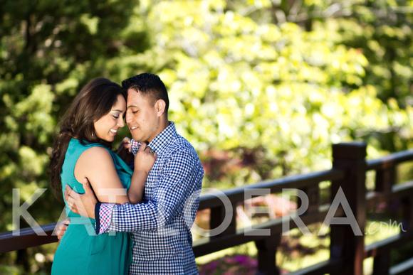 weddings, engagements, japanese tea gardens, san francisco, photography, photographer
